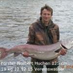 Forster Huchen Bert 125 cm 19 kg 20151212