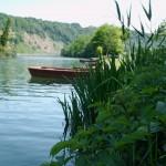 Zille Ufergras FischerhausB